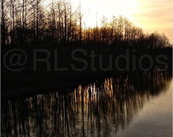 Nature Photography: Riverbank reflections