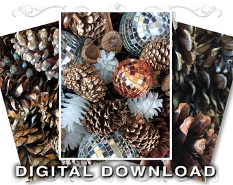 Pinecones Clip Art Stock Photos | Digital Download | Christmas Clipart | Pine cone Decoration | Scrapbook Background | Commercial | 01