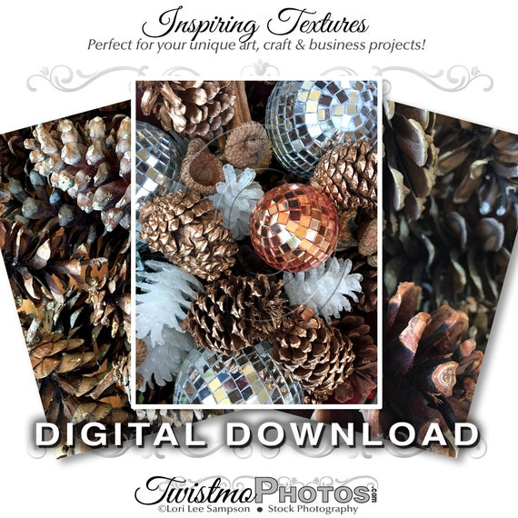 Pinecones clip art stock photos digital download