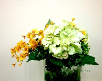 Orchid with Modern Arrangements F1544