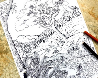 Wilderness, coloring page, coloring pages, mountains, trees, stream, grass, ferns, water, valley