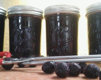 Blueberry jam, sugar free. Sweetened with only Pyure and Xylitol