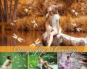 25 Dragonfly Overlays Photoshop Overlay Natural Dragonfly Overlays Flying Dragonflies Flying Dragonfly Photo Overlays Dragonfly PNG