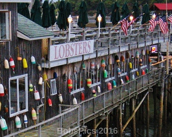 Maine Series- Bar Harbor, ME