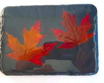 """Slate Maple Leaf Plaque - (6"""" x 8"""" or 15 x 20 cm) Real Maple Leafs with 2 hooks on the back"""