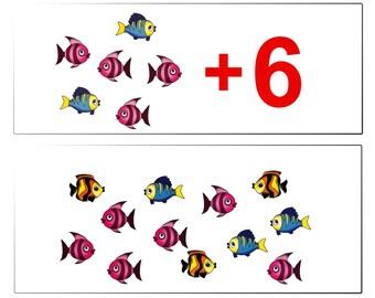 Doman's Maths Addition Cards