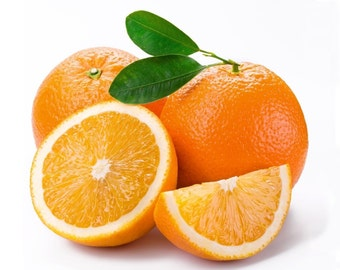 Citrus: Sweet Orange