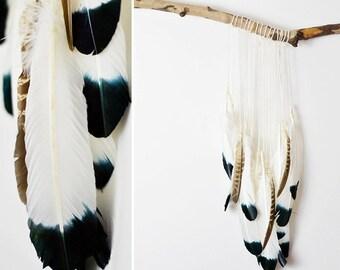 Wall Hang - Feathers