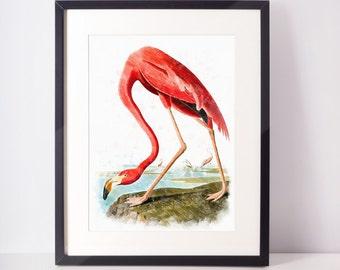 Wall Decor, pink flamingo digital print flamingo art print flamingo poster flamingo watercolor instant download flamingo prints