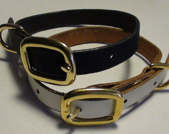 Leather Puppy dog Collar with brass fittings