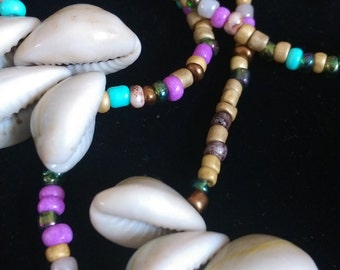 Cowries and Colors