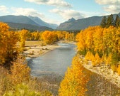 Fall River,Photo,Digital Image Download,Photograph,Art,Bitterroot River,Picture,Fall Colors,Montana River, 8 x 10 in (20 x 25 cm) x 300 dpi