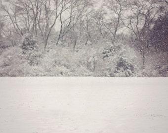 Winter Snow Digital Backdrop