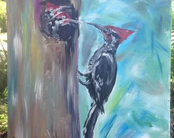 Feed Me Woodpeckers