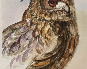 Owl watercolor by Gushunze(Fine art)