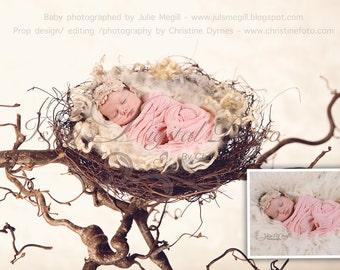Instant download Prop Digital Newborn Photography studio ( Nest 2 ) high resolution digital file