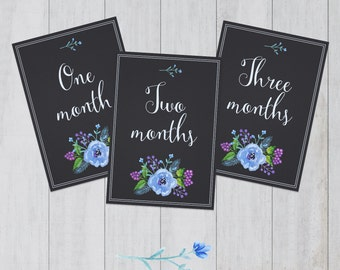 Baby milestone cards / 1-12 months birthday photo props
