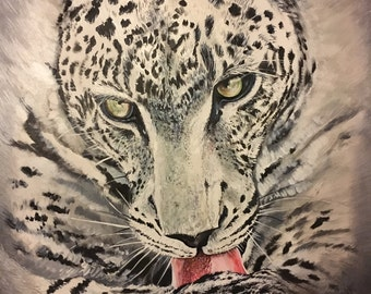 Leopard black & white