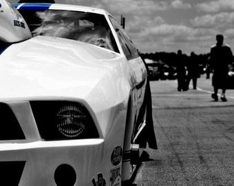 Mustang Photo.(8x10)