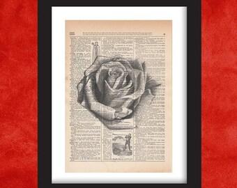 Rose Wall Decor, Dictionary Art Print, Dictionary Art, Dictionary Print, Dictionary Pages, Dictionary Page Art, Dictionart, Rose Wall Art
