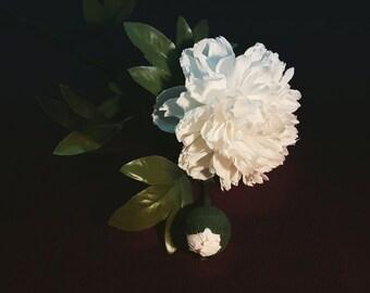 Peony - Paper Flowers (Handmade)