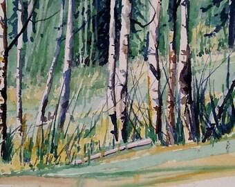 Original watercolor, Aspen Trees