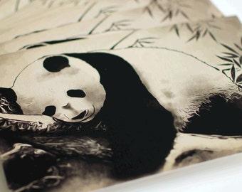 Animal Postcards (4 items)