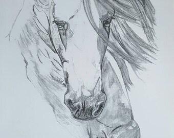 Horse Pencil Drawing Print 9x12