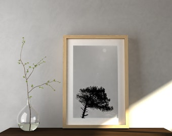 Tree top. Flower, Nature, room decoration, Wall art, Picture, Interior design, Digital Print, Black and White, Minimalism