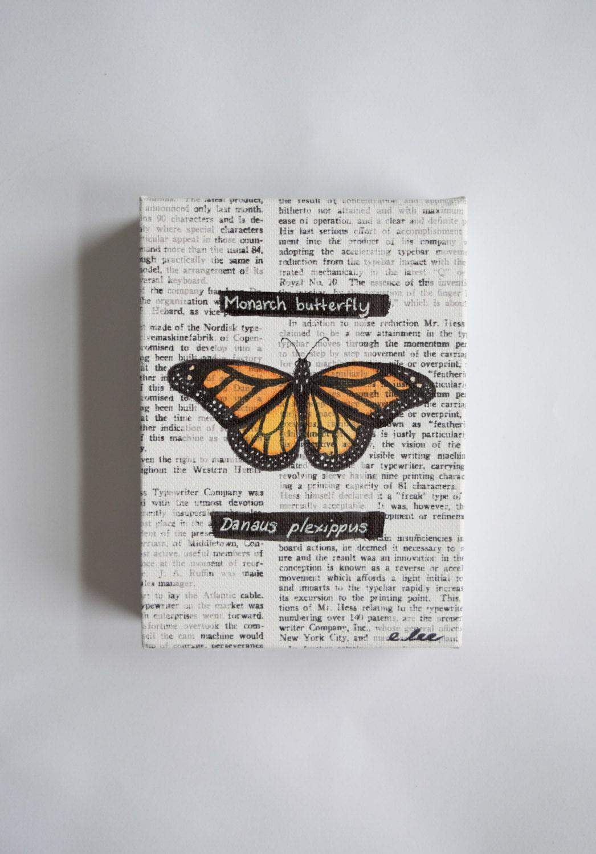 Pintura de la mariposa monarca papel lienzo pintura