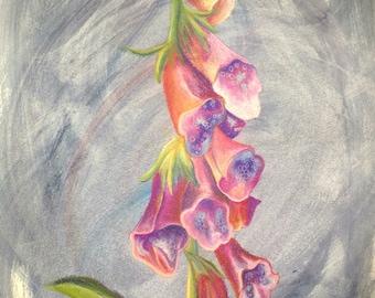 Original Foxglove Drawing on Paper