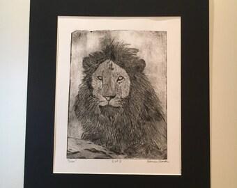 Lion Etched Print