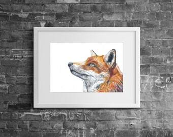 Original 'Red Fox' A4 Watercolour Art Painting
