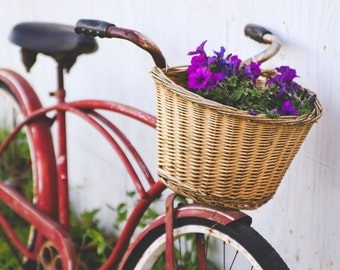 vintage bike photo, flower photo, fine art photography, wall decor, farmhouse decor