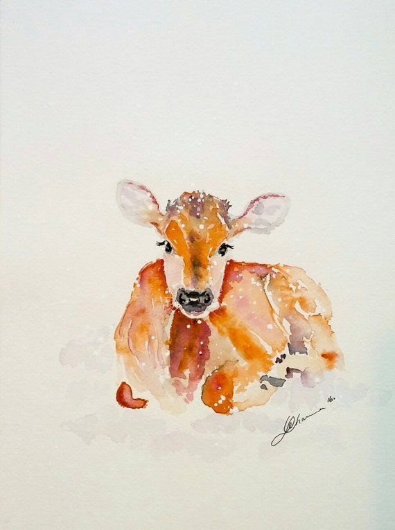 Cow Painting Original Watercolor Jersey Calf In Snow Free