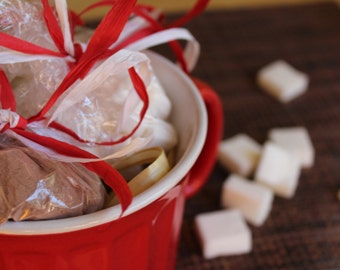 Hot Cocoa with Marshmallows Gift Set- Vegan, Gluten Free, Sugar Free, Hot Chocolate, Holiday, Christmas