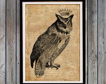 Bird art print Owl print Quirky gift Rustic home decor SH739