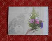 postcard set : embroidery + sprigs