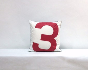 Red 3 Recycled Sail Pillow