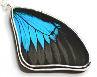 Papillio Ulysses Real Butterfly Wing Necklace. Butterfly Pendant. Real insect jewelry. Black and blue butterfly.