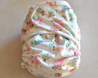 One Size All in One Cloth Diaper
