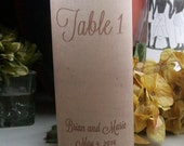 FOR Yeny - Burlap and Lace Designed Vellum Table Number Luminaries (15)