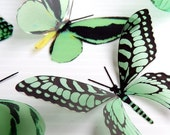 NEW YEAR SALE 36 x Special Mint Green 3D Butterflies great for Weddings, Crafts