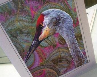 greeting card print of art sandhill crane zentangle