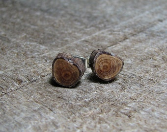 MINIATURE Cedar Twig Wooden Stud Earrings by Tanja Sova