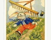 Valentines Day Sale Vintage Reproduction 1940's Color Copy Peter Cotton Tale by Ruth E. Newton, Scrapbooking, Collage, Rabbit, Easter, Birds