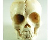 White skull #1 day of dead or dia de los muertos, halloween skull pendant, skull pendant