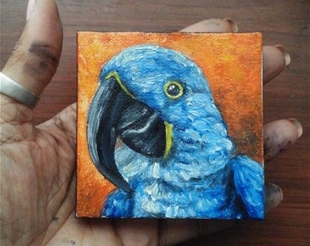 "Mini Oil Painting Bird Amazon Blue Parrot Pet Portrait 3""x 3"" READY to SHIP"