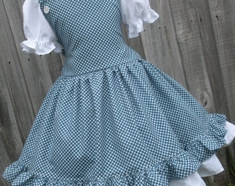 ON SALE Ready to Ship Custom Boutique Dorothy Wizard of Oz Blue Gingham Dress Girl 4 5