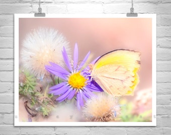 Butterfly Photography, Yellow Dandelion, Pastel Flowers, Yellow Butterfly, Insect Art, Pastel Art Print, Picture on Canvas, Gift Picture